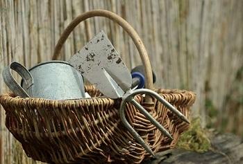 garden-gardening-1290900__340